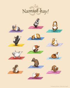 Die Yoga Meerschweinchen Collection Art Print Yoguineas Namast Hay Susse Yoga Plakatkunst Kobay Fareler Gine Domuzu Cok Sirin Hayvanlar