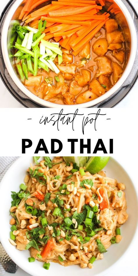 Best Instant Pot Recipe, Instant Pot Dinner Recipes, Instant Pot Chinese Recipes, Recipes Dinner, Crockpot Recipes, Chicken Recipes, Cooking Recipes, Instant Pot Pressure Cooker, Pressure Cooker Recipes
