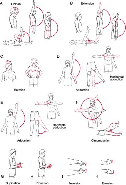 Range of Motion (Angles) from Speaking of.....OT Pinned by SOS Inc. Resources @Christina Childress & Porter Inc. Resources http://pinterest.com/sostherapy.