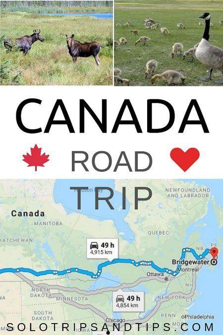 Canada Road Trip Kort Til Din Cross Country Korsel Rejse Budget
