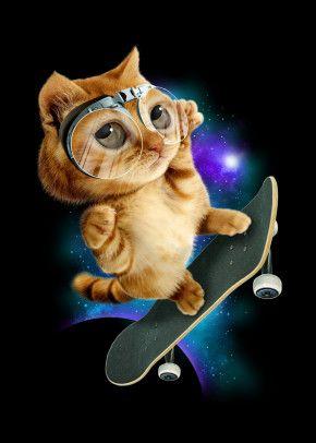 Skateboard Cat Animals Poster Print Metal Posters Hewan Kartun Dan Seni