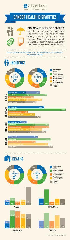 29 Heath Disparities Ideas Disparity Health Heath