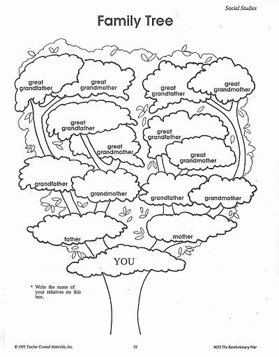 40 Family Tree Worksheet Printable 2020 英語