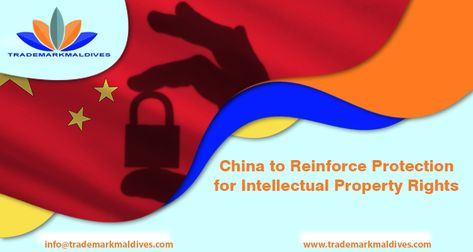 China To Reinforce Protection For Intellectual Property Rights