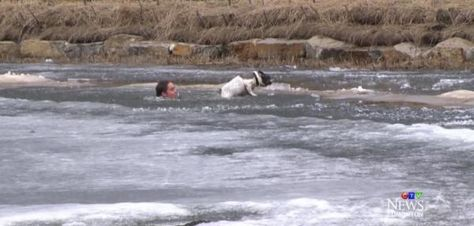 News camera captures man rescuing dog from frozen pond