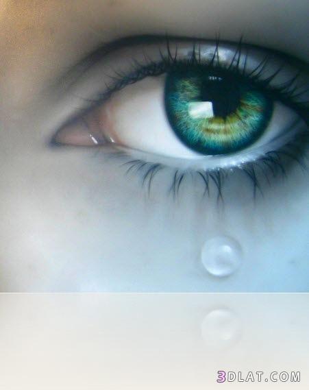 Pin On Eye