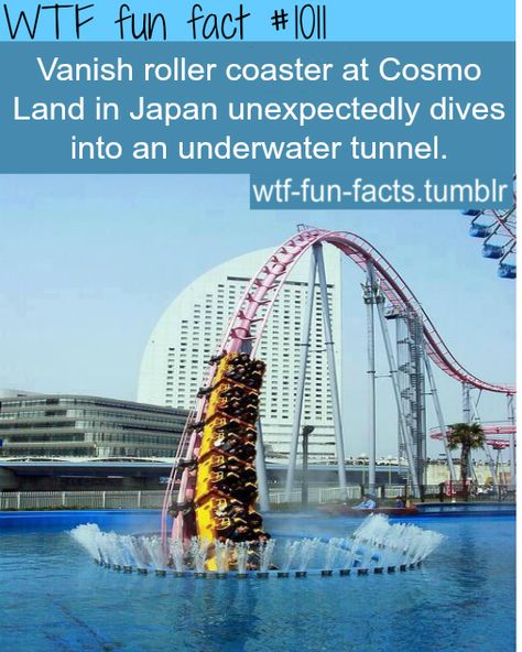 WTF-fun-facts : funny & weird facts I'd probably freak, but cool ass roller coaster! Oh The Places You'll Go, Cool Places To Visit, Places To Travel, Wtf Fun Facts, Funny Facts, Random Facts, Strange Facts, Crazy Facts, Funny Memes