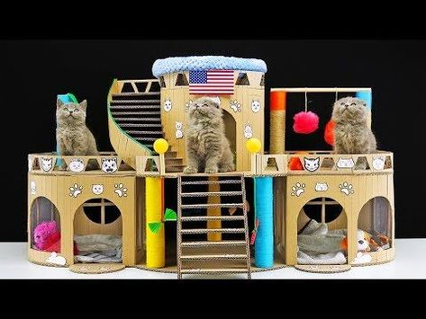 Diy Beautiful Cat House For Three Little Kittens Youtube