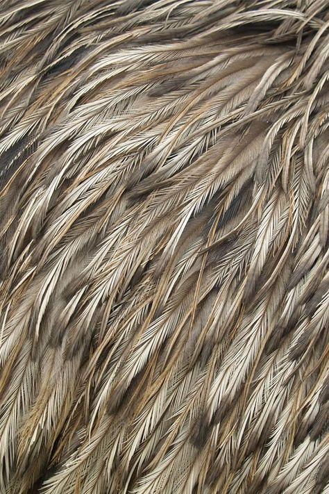 Textuur: Textuur is het oppervlak van een materiaal. Sommige texturen zijn glad, andere zijn harig, of ruw. De structuur van het materiaal hoeft niet overeen te komen met de textuur. (fluweel heeft bijvoorbeeld een zachte harige textuur, terwijl de structuur van fluweel geweven is).