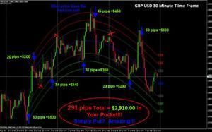 forex trading torrents