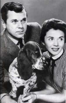 cleo the talking basset hound | Did you like Cleo, the basset hound, in the Jackie Cooper TV series ...