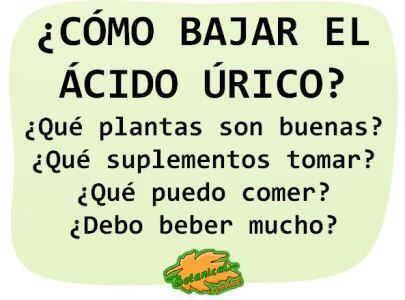 36 Ideas De Plantas ácido Urico Remedios Naturales Remedios Acida