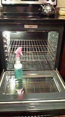 2 Oz Dawn 4 Oz lemon juice 8 Oz white vinegar 10 Oz water