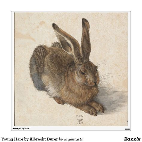 Photo of Young Hare by Albrecht Durer Wall Sticker | Zazzle.com