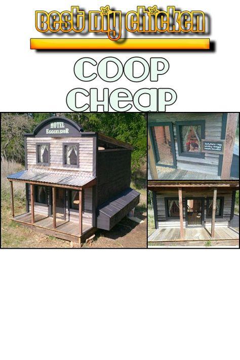 Best Chicken Coop Kit For 20 Chickens March 2020 Chicken Diy