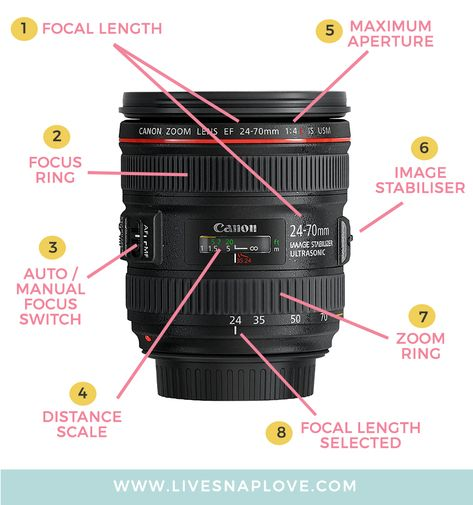 Camera Lenses Explained: Understand All The Functions of Your Camera Lens! — LIVE SNAP LOVE