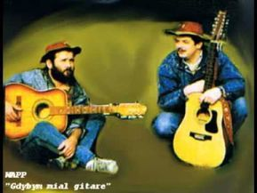 Gdybym Mial Gitare Me Me Me Song Guitar Songs