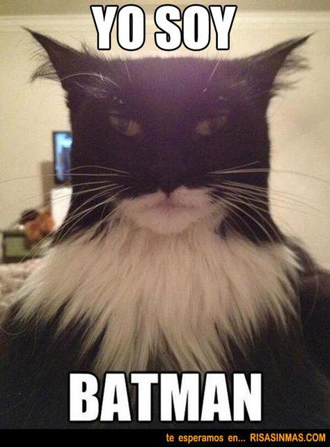 Yo soy Batman; el verbo ser