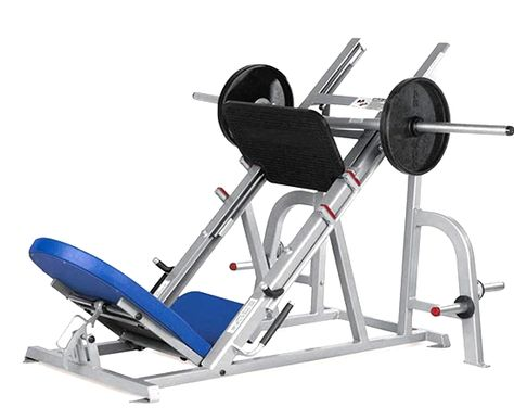 Gym Equipment Guide For Beginners Names And Pictures Aparelho