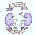 draw a cute kidney drawing