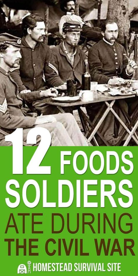 In Order To Survive Soldiers In The Civil War Had To Rely On A Variety Of Foods That Would Keep For Long Periods Of Civil War American Civil War Civilization