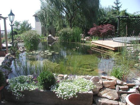 Schwimmteich für groß und klein by designergartenat, via Flickr - kunstfelsen selber machen