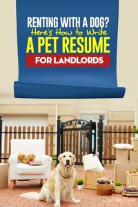 How To Write A Pet Resume For Landlords Being A Landlord Pets Dogs