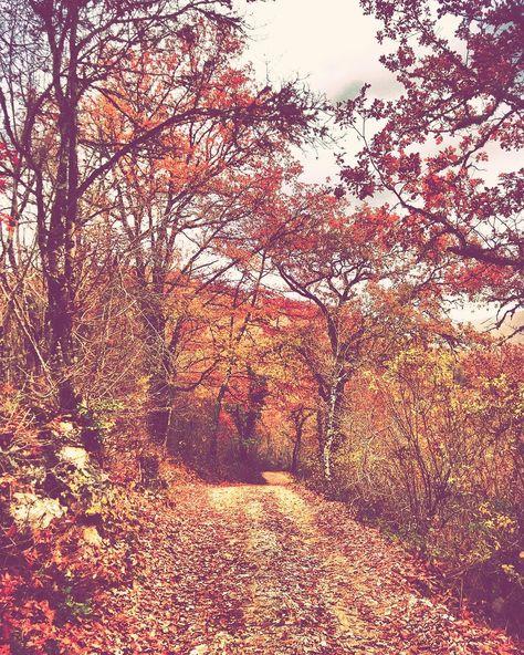 autumncolors e mi pare di sapere e...