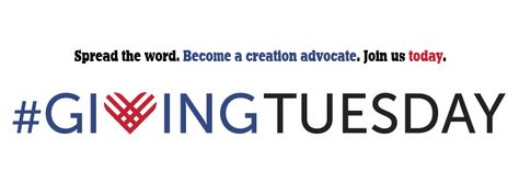 Giving Tuesday—Become a Creation Advocate!