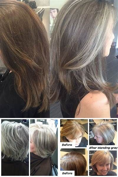 Blending Gray Hair With Highlights Bing Images Blending Gray Hair Blending Grey Hair With Highlights Highlights For Dark Brown Hair