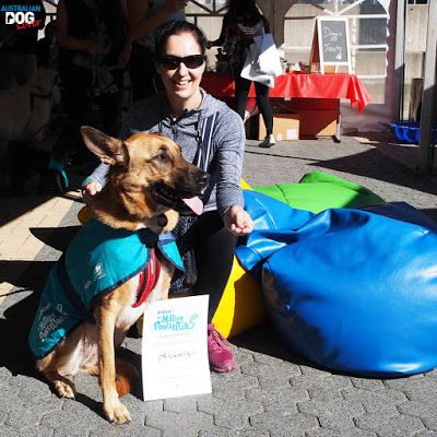 Million Paws Walk Rspca Australia May 20 Australian Dog Lover Dogs Day Out Dog Lovers Paw