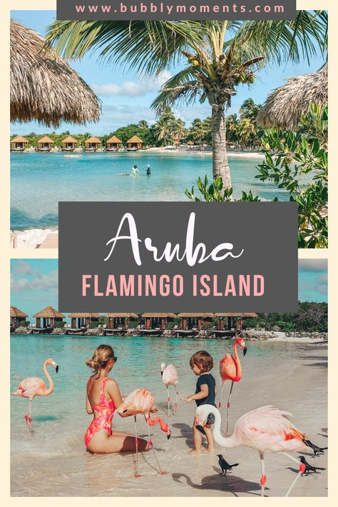 Visiting Flamingo Beach: A Magical Aruba Moment