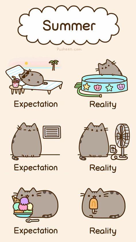 Pusheen - expectations of summer