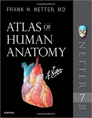 Download Pdf Atlas Of Human Anatomy Netter Basic Science Free Epub Human Anatomy Anatomy Atlas