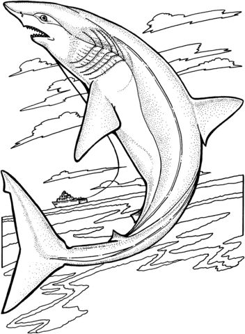 Lemon Shark Jumps Out Of The Water Coloring Page With Images