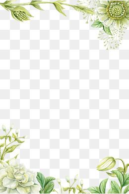 Green Hand Painted Flower Borders In 2020 Flower Border Png