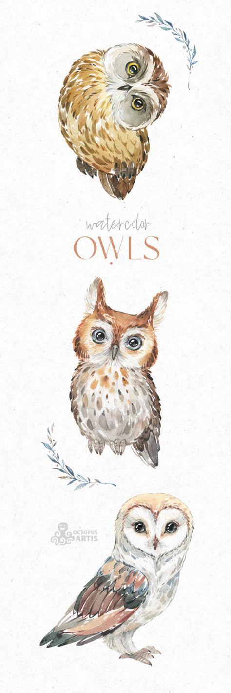 Owls. Watercolor animals clipart, woodland, birds, forest, wreath, floral, cute, nursery art, nature, realistic, wild, barn, boobook,