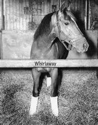 Whirlaway, Triple crown winner of 1941