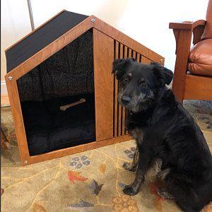 Casa Para Perros Skeleton Lounge Moderna Casa Para Perros Cama