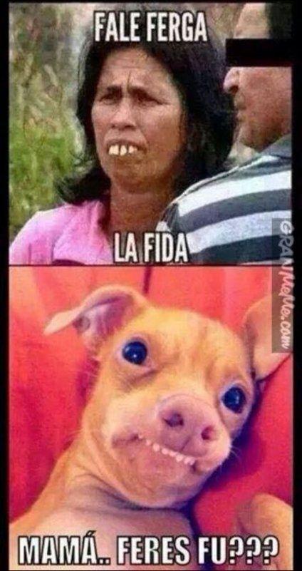 Memes En Espanol Chistosos Groseros Jaja 39 Ideas Funny Spanish Memes Humor Memes En Espanol