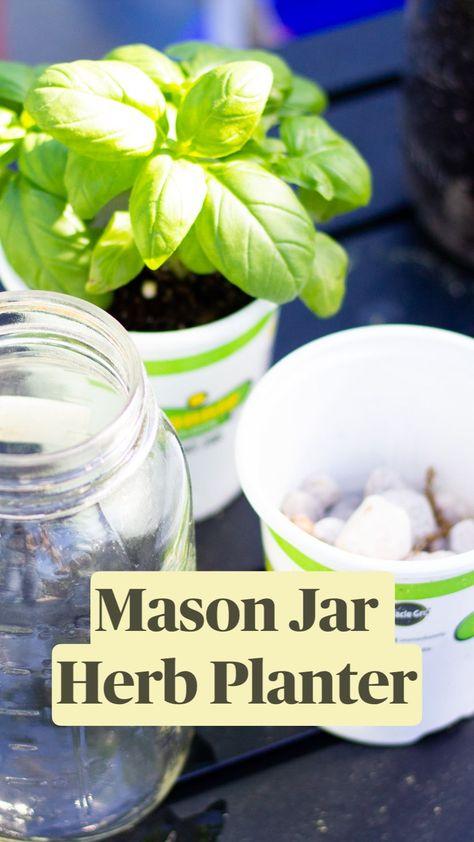 Suberb Mason Jar Herb Planter