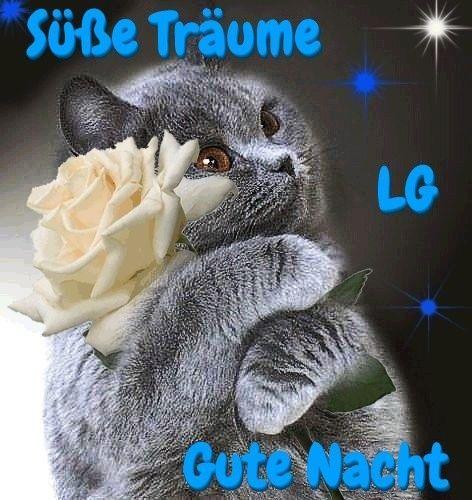 Boa Noite Pinterest Gute Nacht Gute Nacht Bilder Gute Nacht Spruche