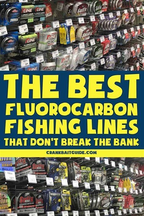 Florida Fishing License Requirements Fishing Simulator Fishing 1000 Islands Fishing Cha Fluorocarbon Fishing Line Trout Fishing Tips Fishing Techniques
