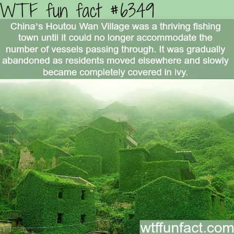 Abandoned Chinese village reclaimed by nature - WTF fun facts