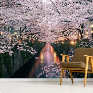 Sakura On Meguro River Wallpaper Wallsauce Us In 2021 Cherry Blossom Japan Japan Cherry Blossom Festival Cherry Blossom Season