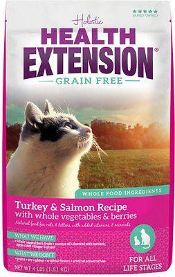 37 99 15 Llb Bag Health Extension Grain Free Turkey Salmon Recipe Dry Cat Food 4 Lb Bag Chewy Com Grain Free Cat Food Grain Free Dry Cat Food