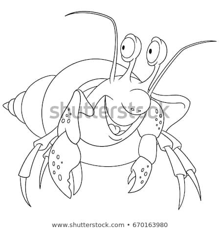 Coloring Page Cartoon Hermit Crab In A Shell Vector Illustration