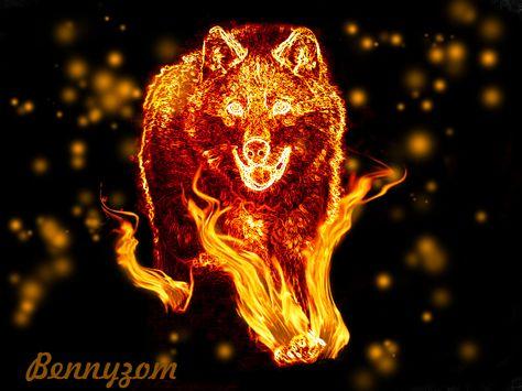 Anime Fire Wolves Fire Wolf Wallpaper Hd Fire Art Wolf Wallpaper Wolf Art