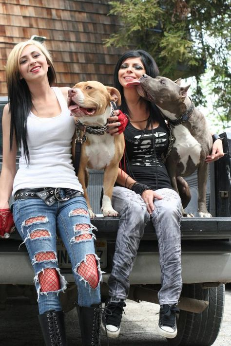 Pin By Shawn Walker On Pitbulls And Paolees With Images Pitbulls