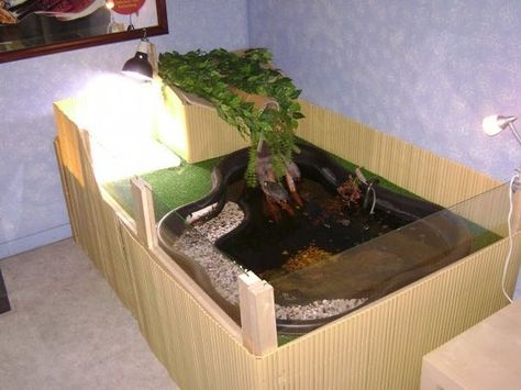 @Stacie Harper indoor pond for turtles elevated container: